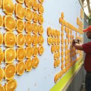 Glad Oranges Billboard