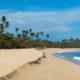 Best Beach Puerto Rico Poll